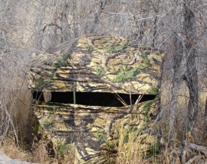 Dark Horse: Best Ground Blind for Deer Hunting