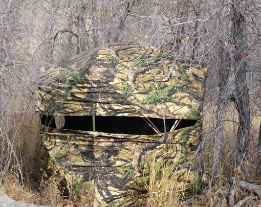 evolution deer texas ground the examiner exam blind hunting features dec outdoors blinds of