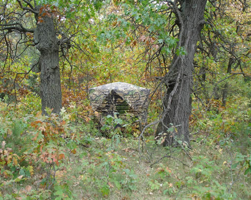 ground deer on best blind images stuff cool pinterest stands hunting blinds