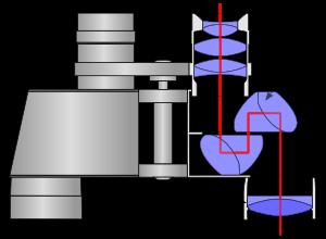 Binocular Diagram
