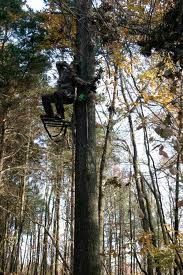 Best Hang On Tree Stand for Hunting