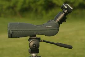 Best Camera for Digiscoping