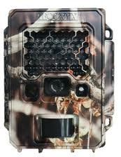 Best Trail Cameras for Hunting